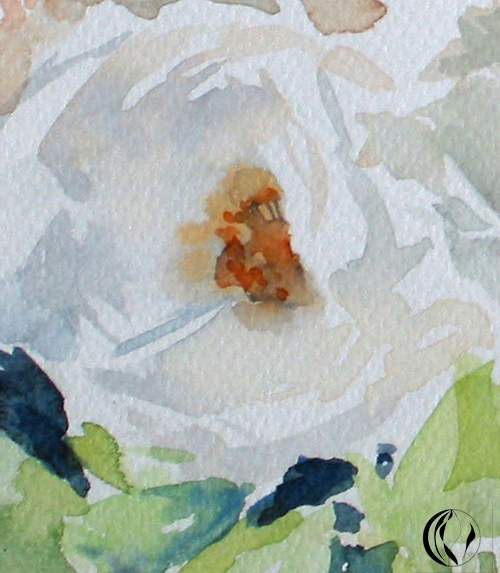 Aquarellbild weiße rose von sonja jannichsen