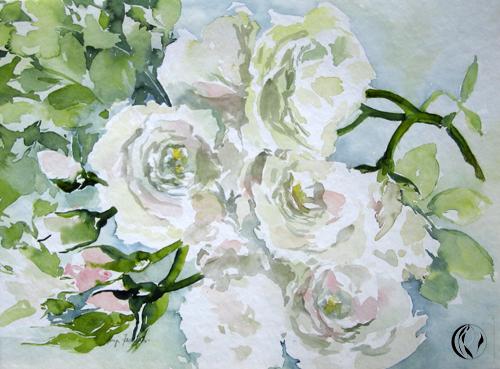Aquarellbild von weißen Rosen - von Sonja Jannichsen