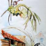 Bienenkästen – Sonnenblumen – Herbst
