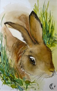 malen_am_meer_aquarell_hase