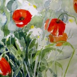 malen_am_meer_mohn_in_nordfriesland_aquarell
