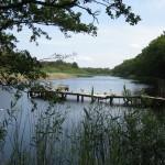 malen_am_meer_prerow_malkurs_landschaft