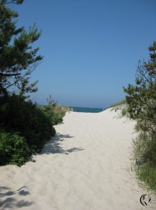 malen_am_meer_prerow_malkurs_strandaufgang
