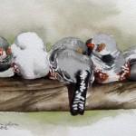 malen_am_meer_zebrafinken