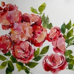 malen_am_meer_gartenbuch_buschrosen_rot_aquarell