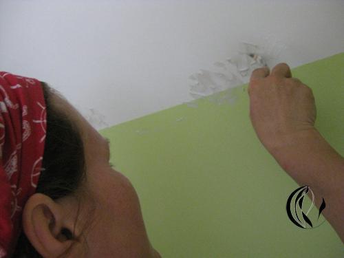 Rosen für Ella – Interieurmalerei – Acrylmalerei