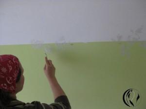 malen_am_meer_wandmalerei_interieurmalerei_rosen_in_acryl_sonja_jannichsen_012