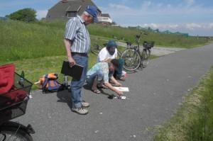 malen_am_meer_malkurs_nordfriesland_hooge_sonja_jannichsen_weltnaturerbe_wattenmeer_reiseskizzen