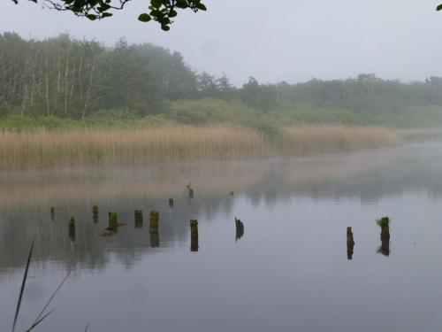 malen-am-meer-prerow-malreise-2016249