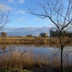 malen_am_meer_emil_noldes_landschaft